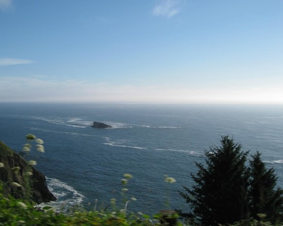 Otter Crest Loop - view from car