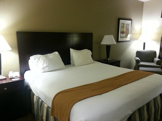 Holiday Inn Express Hotel & Suites San Antonio: Room 410 view #2