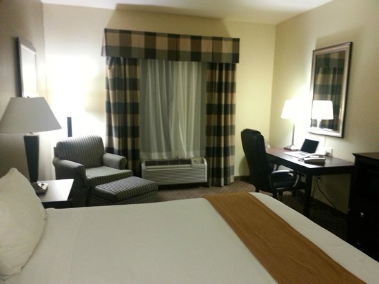 Holiday Inn Express Hotel & Suites San Antonio: Room 410 View #1