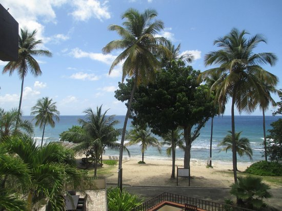 Renaissance St. Croix Carambola Beach Resort & Spa: View from lounge