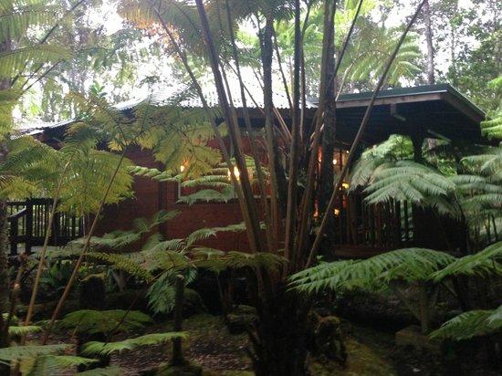 Volcano Village Lodge : outside of Haleakala