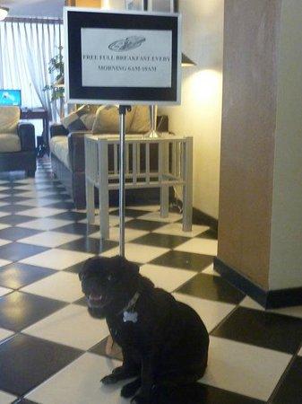 The Hotel Blue: Lobby