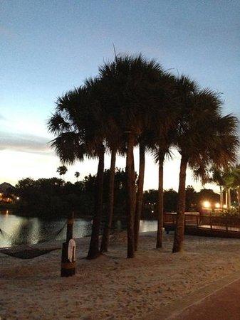 "Disney's Caribbean Beach Resort: ""beach area"""