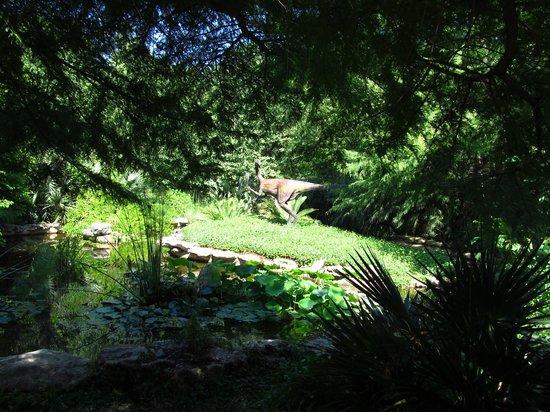 A Swedish Cabin Picture of Zilker Botanical Garden