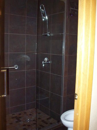 BEST WESTERN Plus Superior Inn & Suites: shower