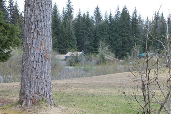 Stoney Creek RV Park: View from Site A6