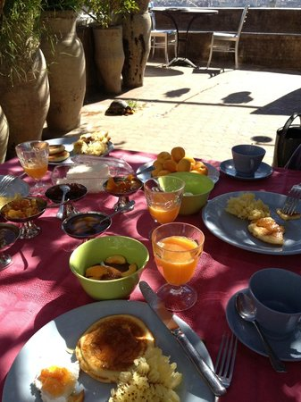 Riad Numero 9: Breakfast on the rooftop terrace with a tortoise!