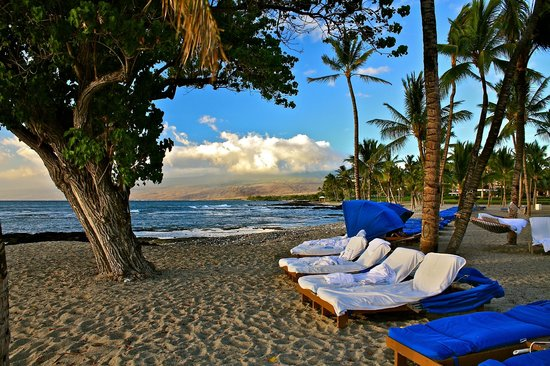 Mauna Lani Bay Hotel & Bungalows : Best beach view ever