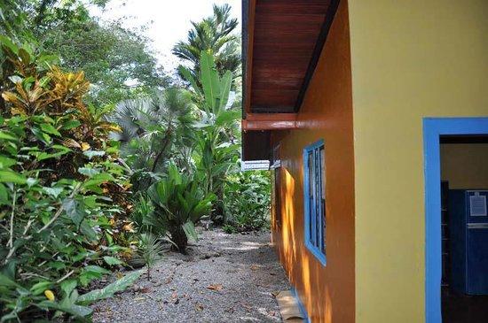 Casas La Selvatica : Outside