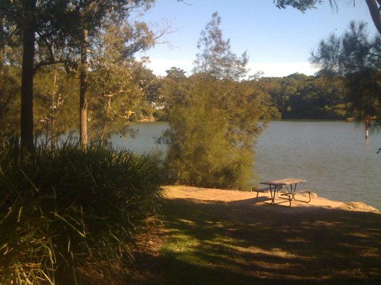 Linley House: Picnic grounds by the river