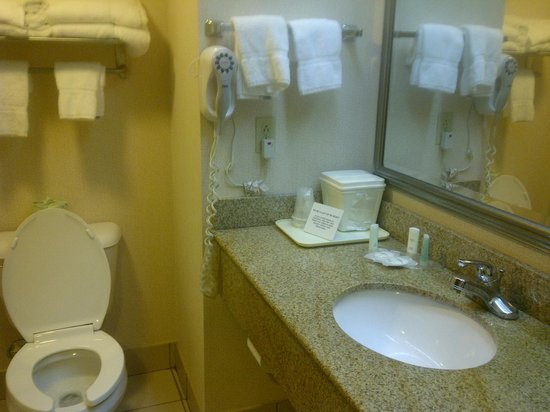 Comfort Suites Cookeville: Bathroom