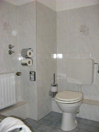 Centro Hotel Royal: toilet