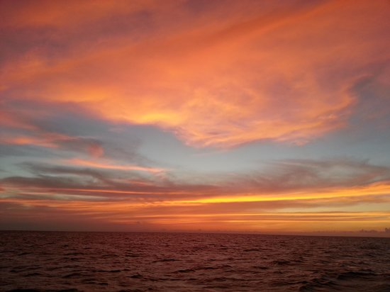 Patrick's Diving Adventures: SUNSET ON WESTSIDE