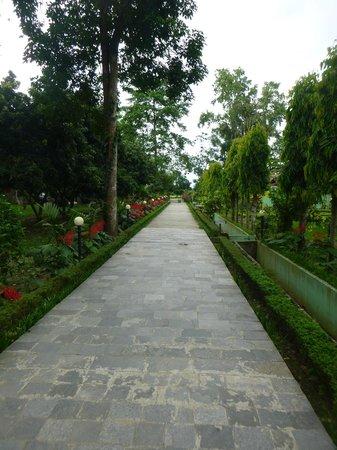 Hotel Hermitage: the gardens