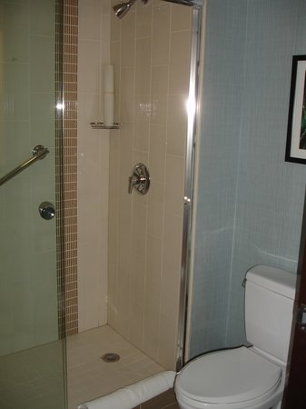 Hyatt Place Secaucus/Meadowlands: Shower/Toilet