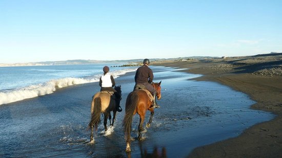 Boutique Horsetreks Day Tours : Stunning Clive beach