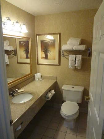 Wingate By Wyndham Dallas / Las Colinas: Restroom was nicely appointed.