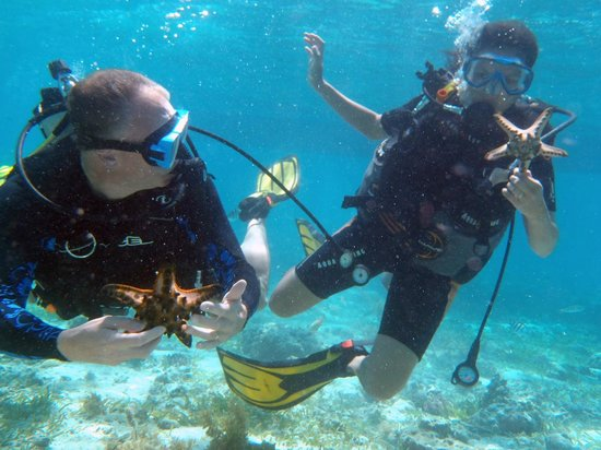 Mactan Island, Filippinene: Diving at the marine sanctuary