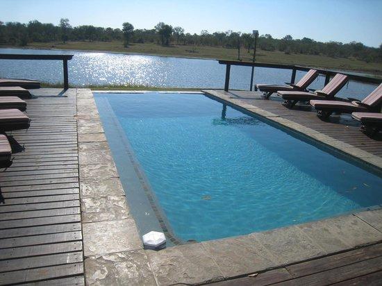 Arathusa Safari Lodge: infinitey pool with a great view