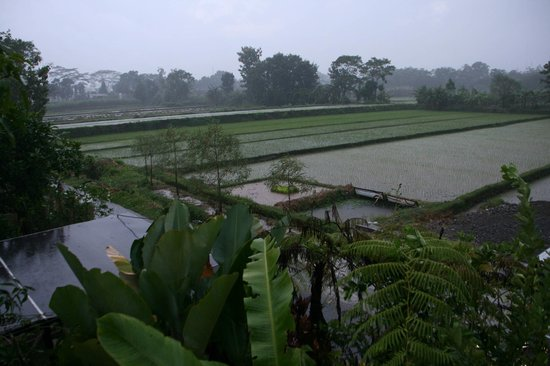 Alamanda Villa: view from our room