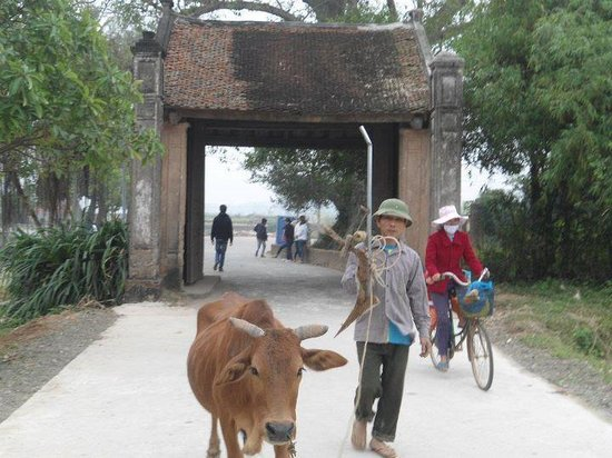 Duong Lam Ancient Village: Village gate