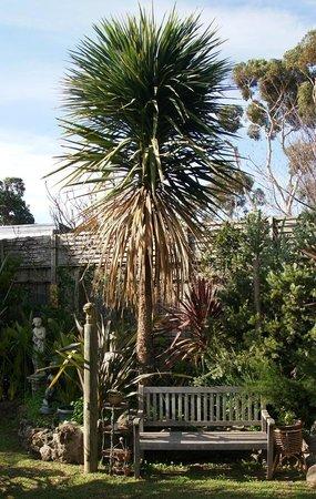Seas The Day B&B: Restful Gardens