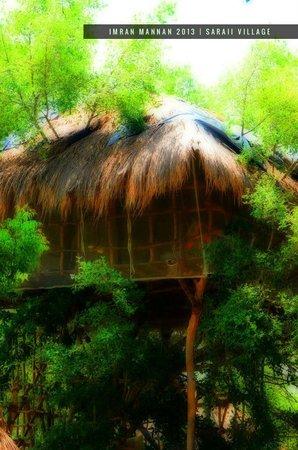 Saraii Village: Tree House