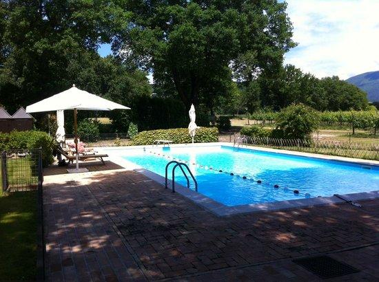 Agriturismo Podere La Fornace : La piscina