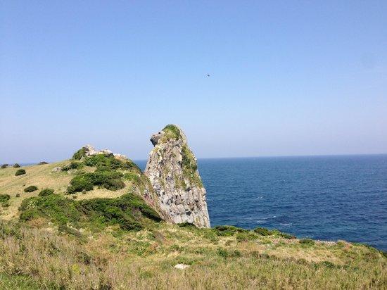 Saruiwa: 猿岩