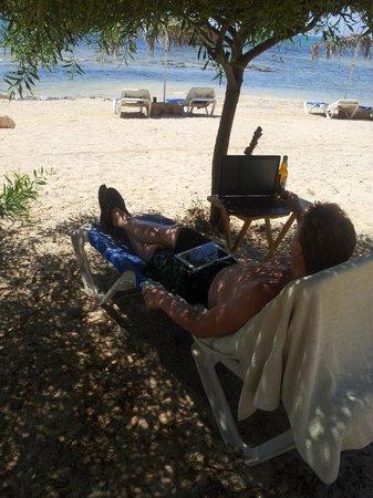Thalassines Beach Villas: Офис в тени деревьев