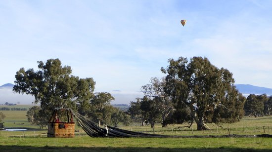 Picture This Ballooning - Melbourne and Yarra Valley: Picture This ballooning over Mansfield VIC