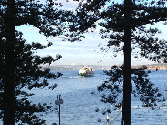 Quest Manly: Morning view.