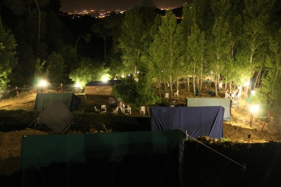 Pinea Campus : The Campground
