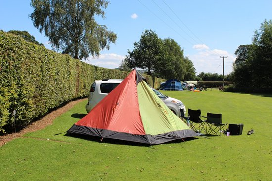 Poston Mill Holiday Home and Touring Park: Camping Field
