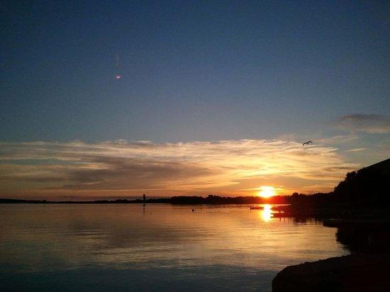 Sunset Pansion Kiko