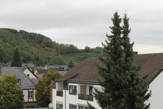 Hotel-Restaurant Weinhaus Grebel : Vinyards in Güls