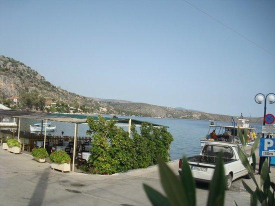 Hotel Apanema: θέα απο κατάλυμα προς την παραλία Αγίου Νικολάου