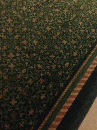 La Quinta Inn Columbus Airport Area: stains all over hall carpet