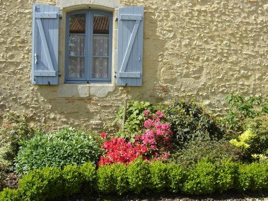 La Maison du Bos : fleurs