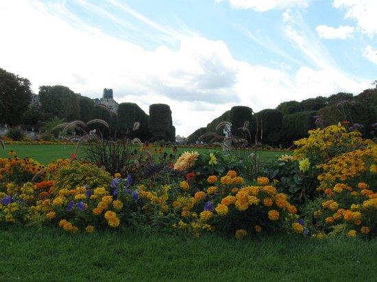 Particolari fioriti foto di giardini del lussemburgo - Giardini particolari ...