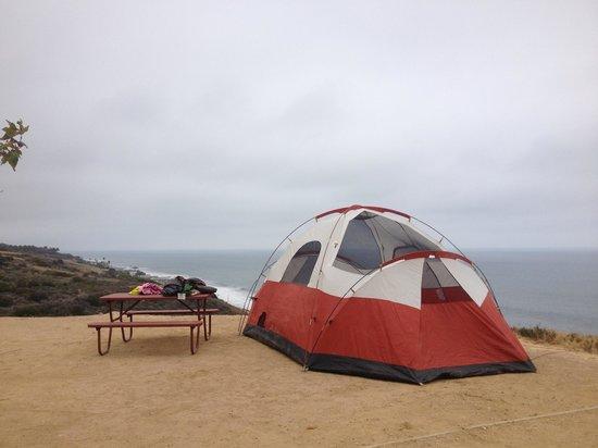 Malibu Beach RV Park: Our first class tent site.