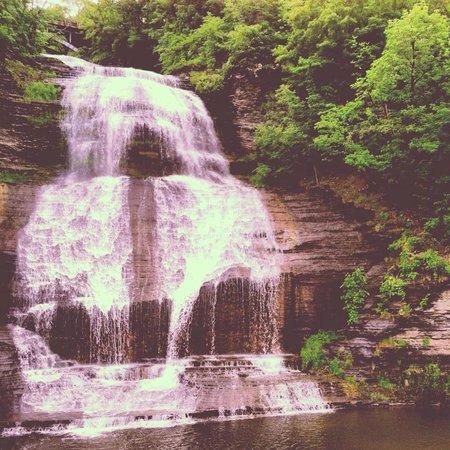 Rosemary's Legacy: Shequaga Falls - 1 minute walk