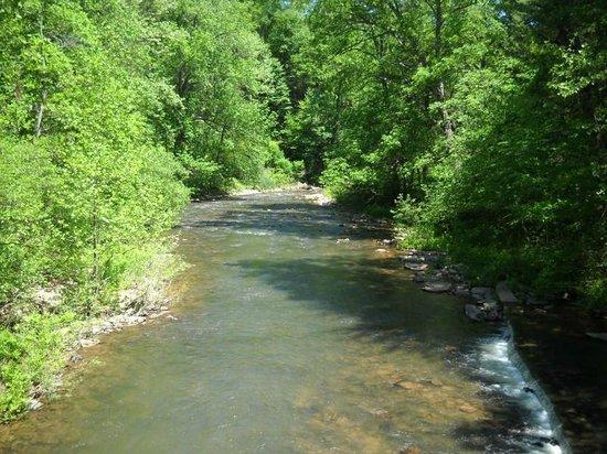 Trough Creek State Park: Trough Creek 2