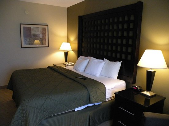 Quality Inn & Suites Durant: Comfy