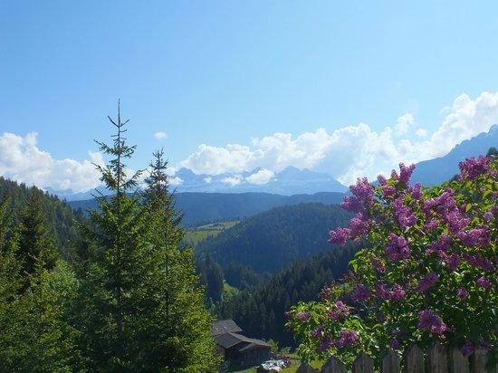 Ganischgerhof Mountain Resort & SPA: View from Terrace