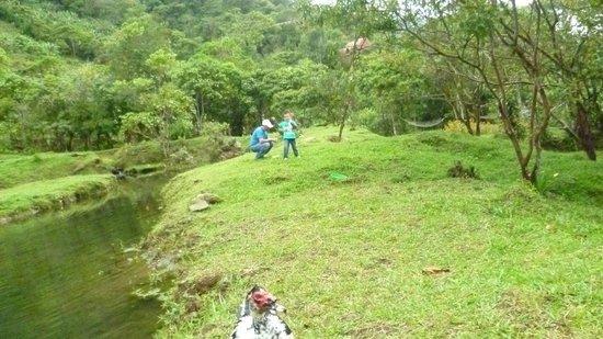 Hotel Quelitales: Laguna principal de pesca de trucha