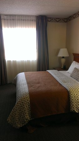 Embassy Suites by Hilton Denver Stapleton: King bed