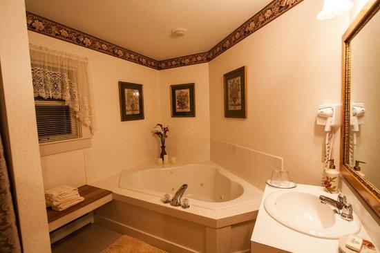Buttonwood Inn on Mount Surprise: bathroom