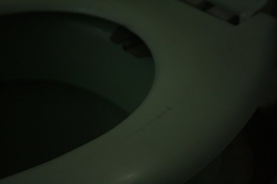 Banjara Orchard Retreat: The toilet seat was dirty!