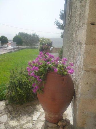 Villa Kerasia: devant notre chambre